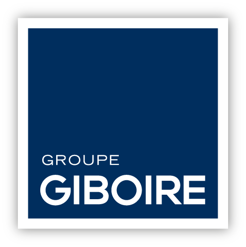 BD - version ombree - LOGO GIBOIRE GROUPE - RVB